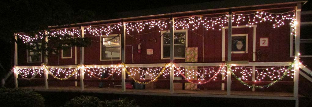 Cabin decorated with twinkle lights
