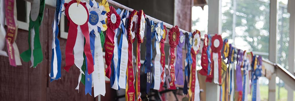 A cabing railing decorated with pony show ribbons
