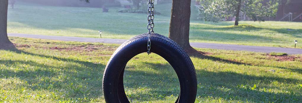 A tire swing, in a field, sparkling at dawn